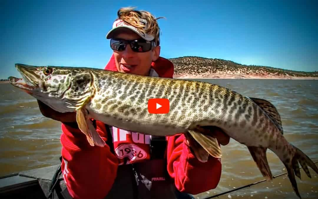 New Mexico Musky
