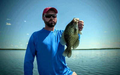 Sight Fishing Crappie
