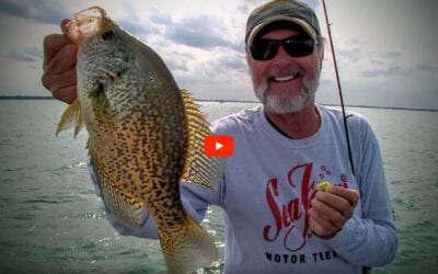Artificial Baits for Crappie