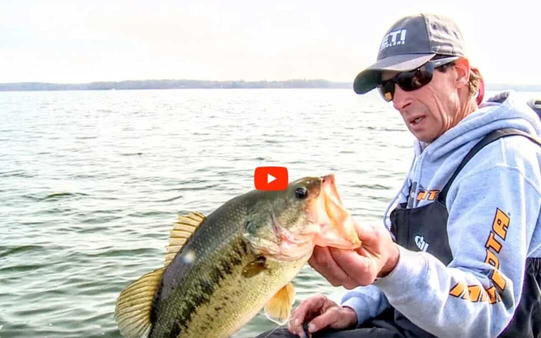 Chilly Largemouth