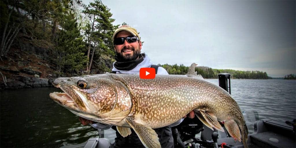 Ice Out Lake Trout