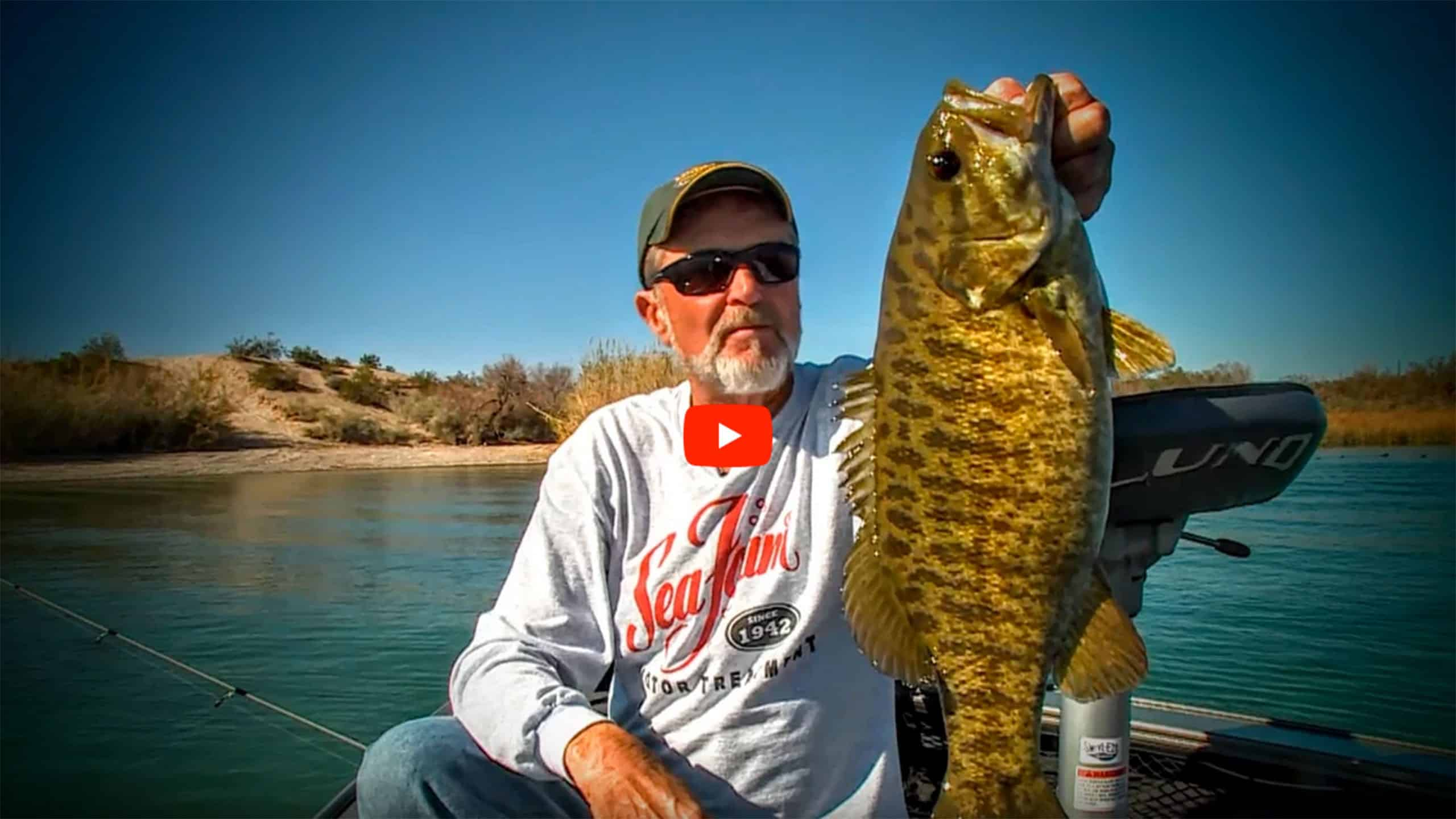 dock fishing largemouth bass