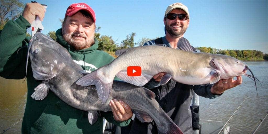 Modern Catfishing