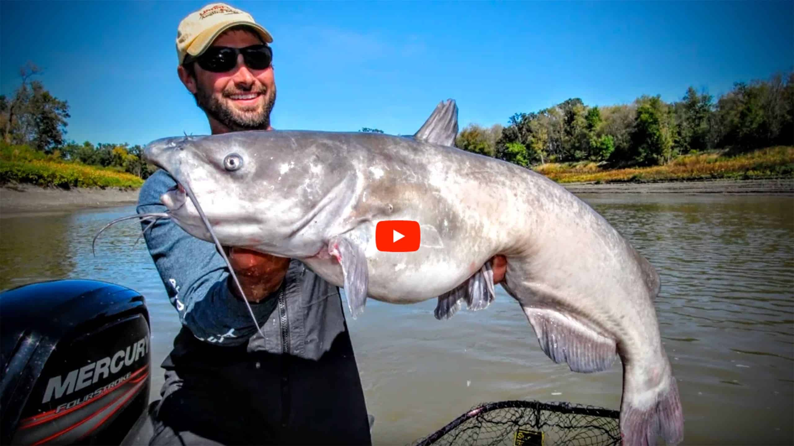 Modern-catfishing