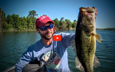 Scatter Rap Largemouth