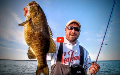 Swim Baits for Smallmouth Bass