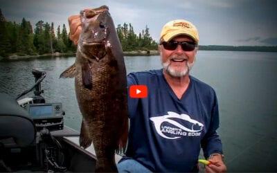 Surface Smallmouth Bass
