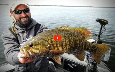 Understanding Smallmouth Bass