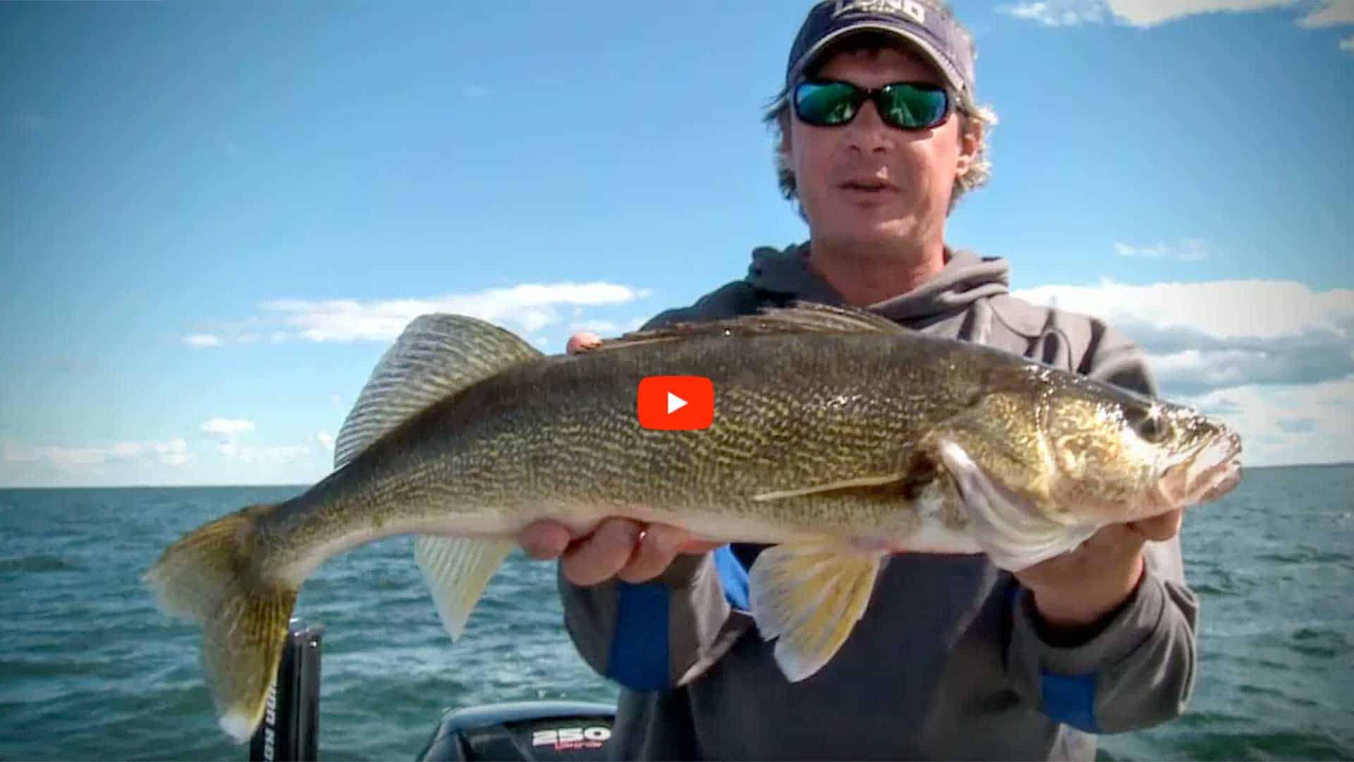 Walleye Fishing Today