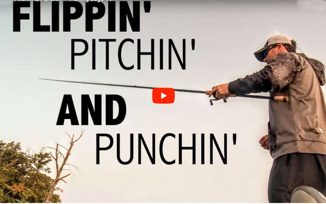 Flipping, Pitching and Punching Bass