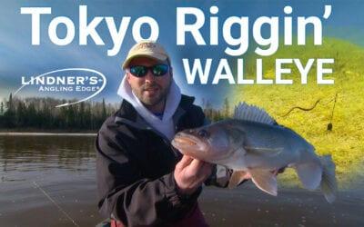 Tokyo Rigging Walleye
