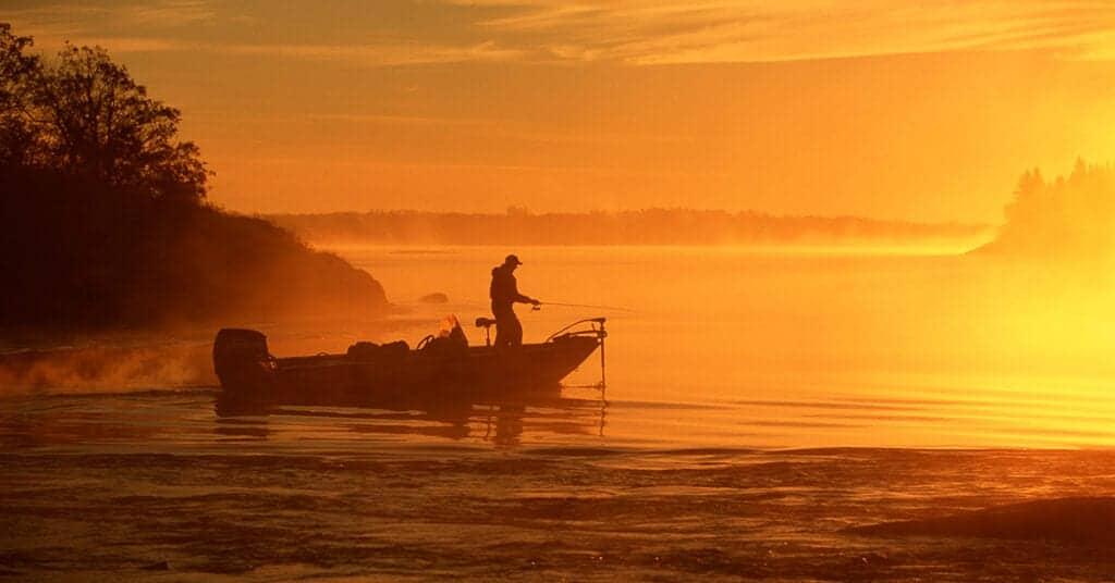 River Walleyes