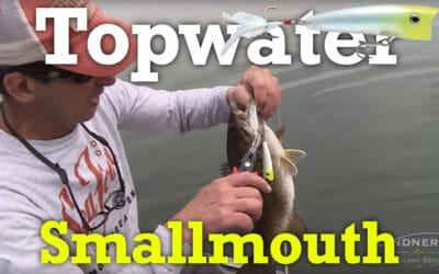 Topwater Smallmouth Bass Fishing: X-Rap Pop